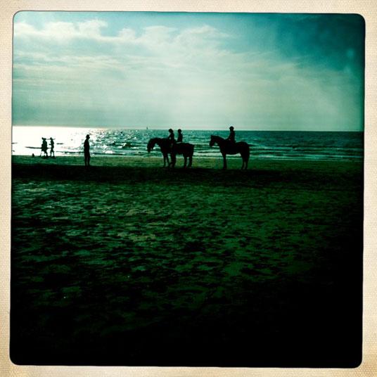 chevaux-sur-la-plage